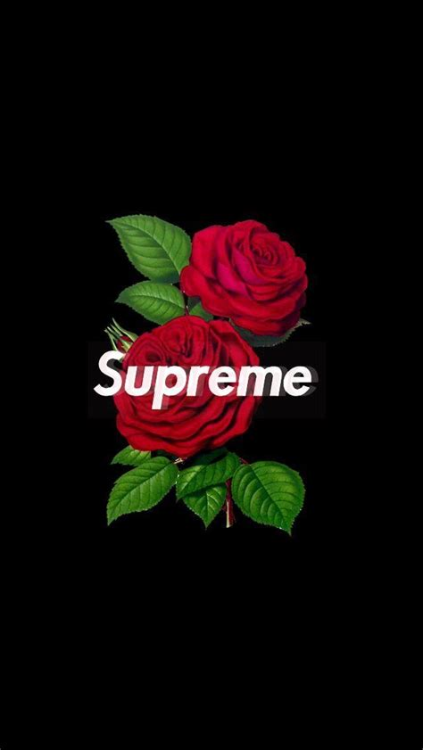 #supreme #rose #wallpaper #iphone image by Wallpaper