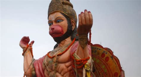 India: Teen With 7-Inch Tail Worshipped as Hindu Monkey