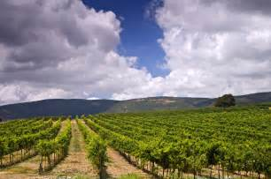 Golan Heights – the top restaurants, farms, vineyards and